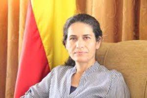 alham ahmed