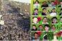 آساييش روج آفا: يمنع إقامة الاحتفالات والتجمعات في ليلة عيد النوروز  منعاً باتاً