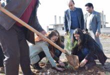 Photo of Partiya me di salvegera rizgarkirina Kobanê de beşdarî çandina darên daristanê dibe