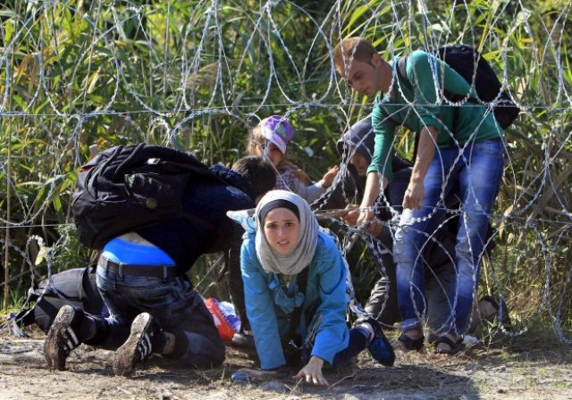 Photo of الحلم الوردي … قصةُ لاجىء