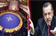 اردوغان وعلاقتهُ مع حلفائهِ في حلفِ الناتو ... إلى أين؟