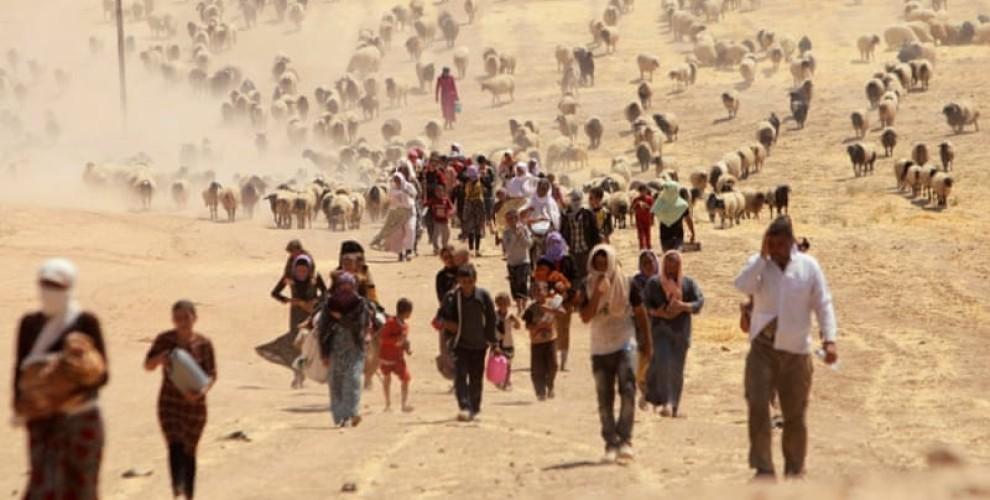 Photo of منظومة المجتمع الكردستاني: العالم أجمع مديون للشعب الإيزيدي