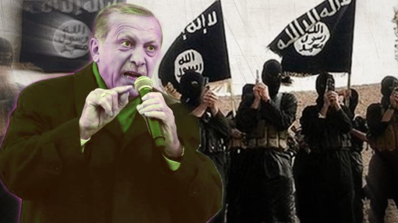 Photo of مينا واتش : تركيا ملاذ آمن للإرهابيين