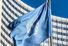 Photo of مفوضة الأمم المتحدة تُطالب تركيا بوقف انتهاكات فصائلها