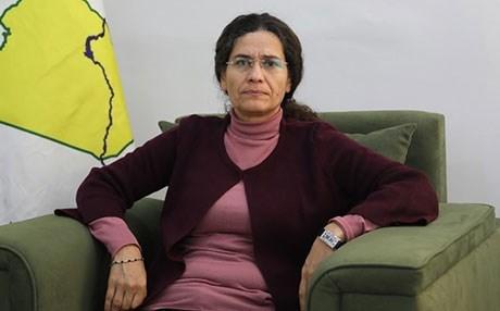 Photo of إلهام أحمد: مشروع الإدارة الذاتية اثبت نجاحه للحل في سوريا